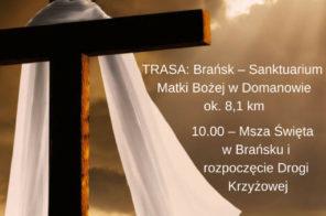 _Droga Krzyżowa Brańsk – Sanktuarium Matki Bożej w Domanowie